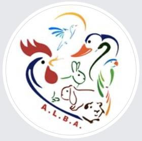 6_ALBA